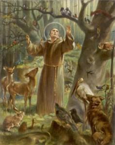 St Francis Preaches
